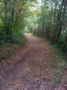 2439 Chemin de St Paul de Serre